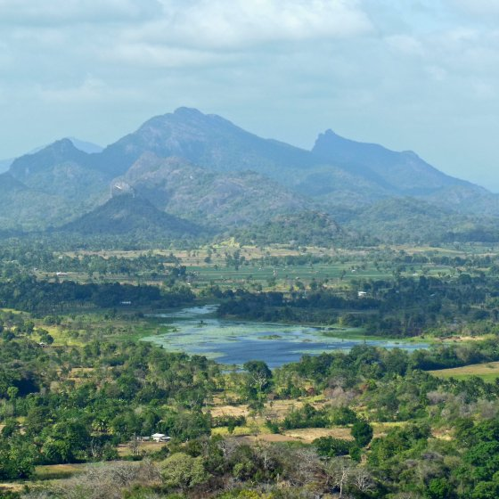 Sri Lanka – Lion Rock